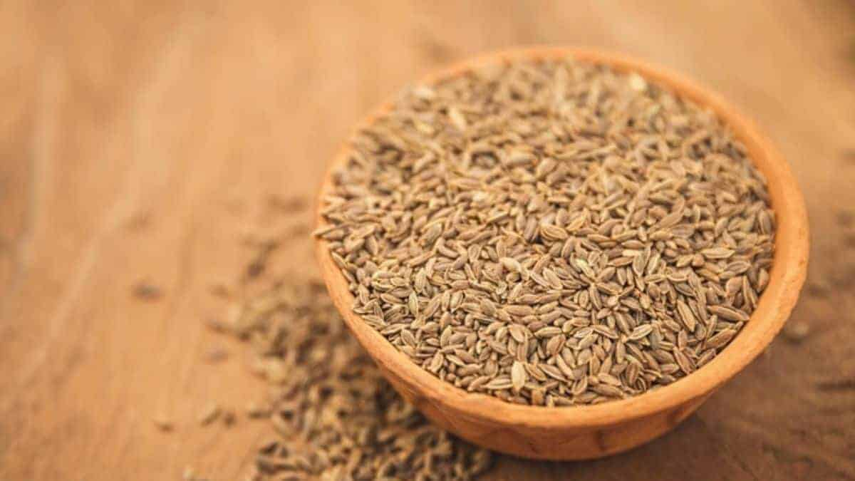 What is Dill Seed Spice?