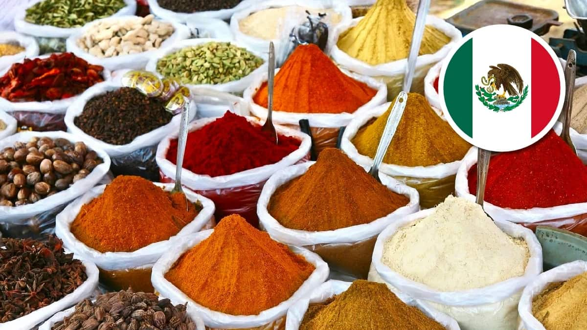 Mexican Spices: List of 15 Traditional Seasonings with Photos
